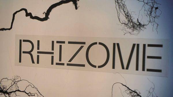 Chalon dans la rue lance le groupe Rhizome
